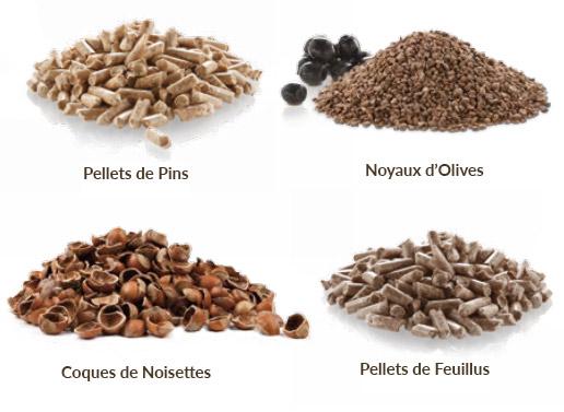 Biocombustibles compatibles Chaudière BioKraft Concept Granulés Bois Pellets Pins Feuillus Noyaux Olives Coques Noisettes